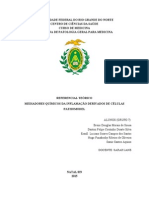 RT- Referencial Teórico Pathomodel - Google Docs
