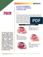 Normas de Calidad de La Carne de Cerdo