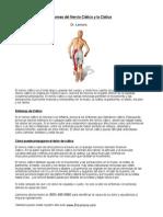 Quiropractico Oxnard - Síntomas del Nervio Ciático y la Ciática