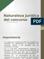Naturaleza Jurídica Del Concurso