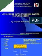 LIXIVIACION DE ENARGITA EN MEDIO SULFATO-CLORURO-OXIGENO.ppt
