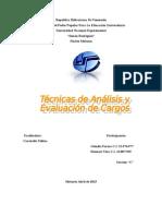 Tecnicas de Analisis y Evaluacion de Cargos