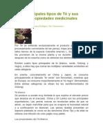 Principales Tipos de Té y Sus Propiedades Medicinales