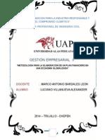 Metodología Para La Elaboración de Un Plan Financiero en Una Economía Globalizada