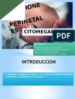 INFECCIONES-PERINETALES