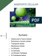 2.3.Transporte Celular PRISCILA