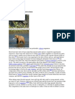 Diet and Interspecific Interactions