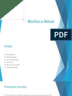 Biofísica Renal