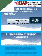La Gestion Ambiental en La Pequeña y Mediana Empresa