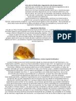 Desarrollo historico de la profesion Ingenieria Electromecanica.docx