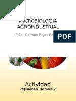 MICROBIOLOGIA AGROINDUSTRIAL
