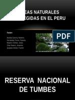Areas Naturales Protegidas en El Peru