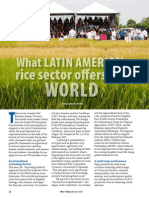 Rice Today vol. 14, no. 2 What Latin America's rice sector offers the world