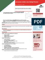 BPMBZ-formation-bizagui-modeliser-bpmn.pdf
