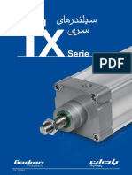 BADRAN Pneumatic Cylinder TX