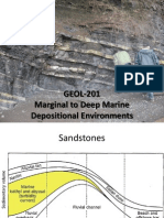 9) Marginal to Deep Marine Environments