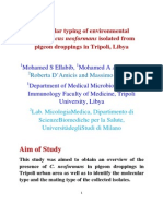 Molecular Typing of Environmental Cryptococcus Neoformans Isolated From Pigeon Droppings in Tripoli, Libya