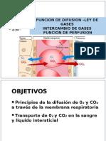 Intercambio de Gases y Perfusión