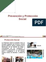 Prevencion y Proteccion Social