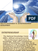 Government Support to Entrepreneurs