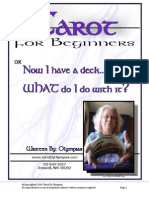 2011 Tarot Booklet by Olympias