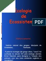 ECOLOGIA DE ECOSSISTEMAS.ppt