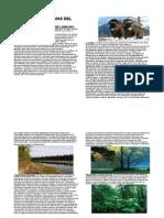11-ACADEMIA GRANDES ECOSISTEMAS DEL PLANETA-CARACTERISTICAS MARZO 2014.docx