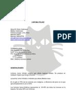 HEMATOLOGIA - Linfoma Felino