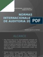 Auditoria NIA 200