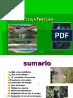 Eco Sistem as 05