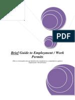 Workpermitsinireland Abriefguide 091216064028 Phpapp01