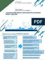 Технический проект реакторной установки БРЕСТ-ОД-300
