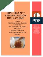 PRACTICA N°  7 ternurizacion.pdf
