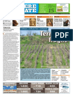 Corriere Cesenate 15-2015