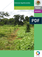 Manual Sistemas Agroforestales