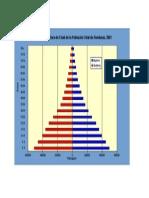 Piramide de Poblacion 2001