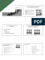 09-Restauraciones de Resinas Compuestas Anteriores - Copia (1)
