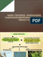 Algas y Protozoos Generalidades, Clasificación, Importancia en Salud Pública y El Ecosistema