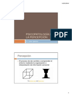 5PL-PERCEPCION