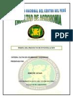 Informe Del Leguminosas