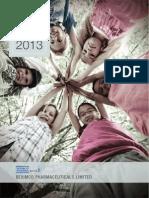 Beximko Annual Report 2013