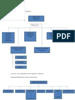departamentalizacion funcinal3_
