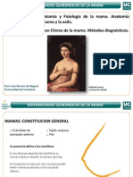 masto.pdf