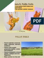 8 Lecture 8 Pallic Soils S1 2012