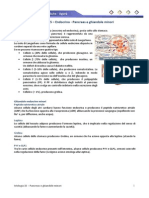 Istologia 15 – Endocrino - Pancreas e Ghiandole Minori