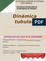 1. Dinámica Tubular