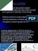 GLAUCOM.pdf