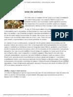 Picadas e Mordeduras de Animais - Turismo Na Natureza - Naturlink