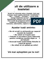 Reguli de Utilizare a Toaletei