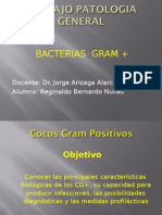 Cocos Gram +